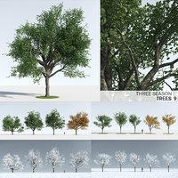 3D trees 9 model