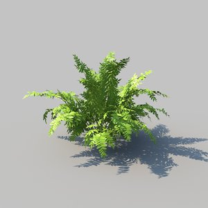 3D model autumn ferns animation
