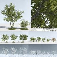 trees 11 model