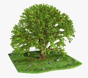 3D tree apple model