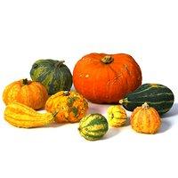 3D set pumpkin