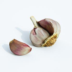 garlic opened 3D