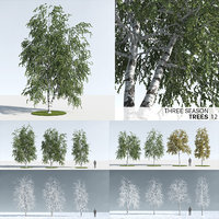 Three Season Trees: Birch (+Growfx)