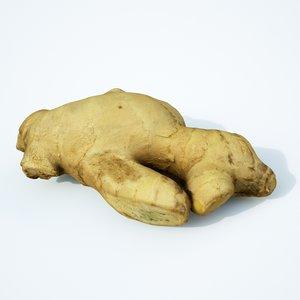 3D ginger spice food