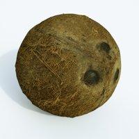 coconut food model