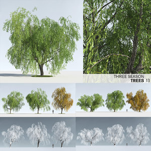 season trees 13 snow 3D
