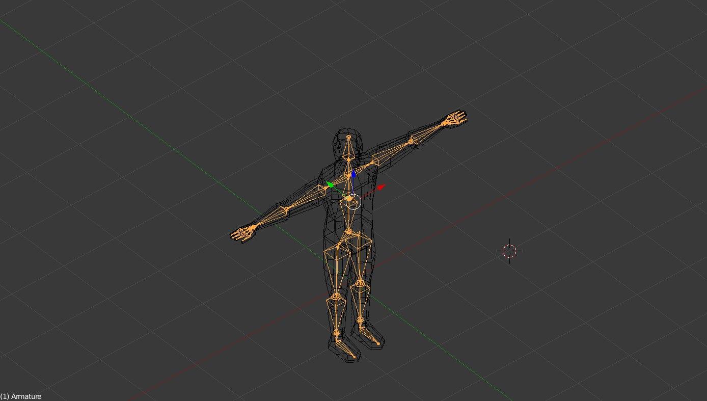 3D human rigged
