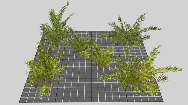 3D model mobile tropical