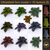 bracken fern bush 3D