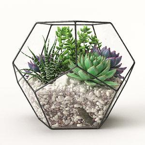 3D model florarium
