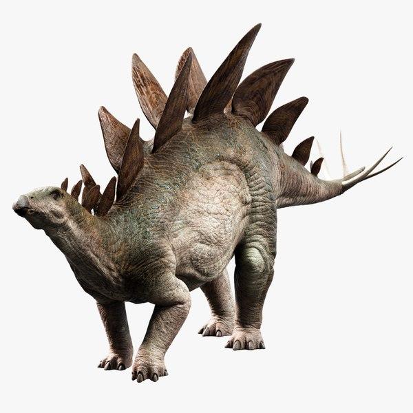 realistic stegosaurus 3D