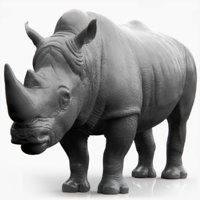 realistic rhino model