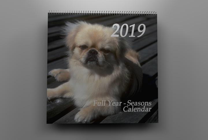 calendar pages 2010 3d model