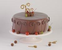 chocolate cake model