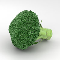 broccoli brocoli vegetable 3D model