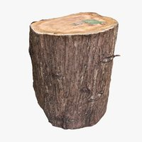 3D old tree trunk seat model