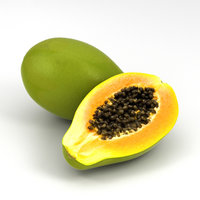papaya food fruit model