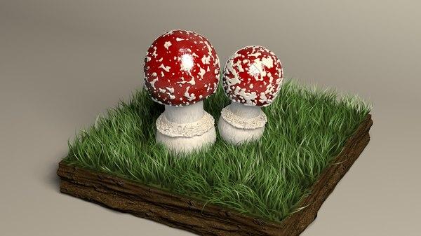 3D mushroom fly agaricus model