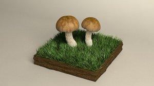 3D mushroom shiikate
