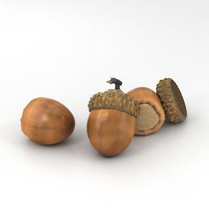 acorn nut plant 3D model