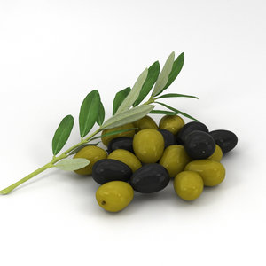 olive food fruit 3D model