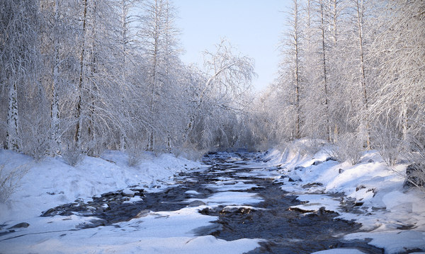 mysterious winter river 3D model
