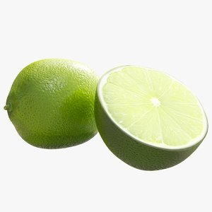 realistic lime model