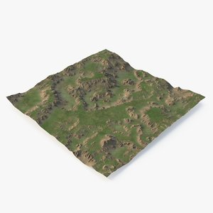 3D grassy terrain