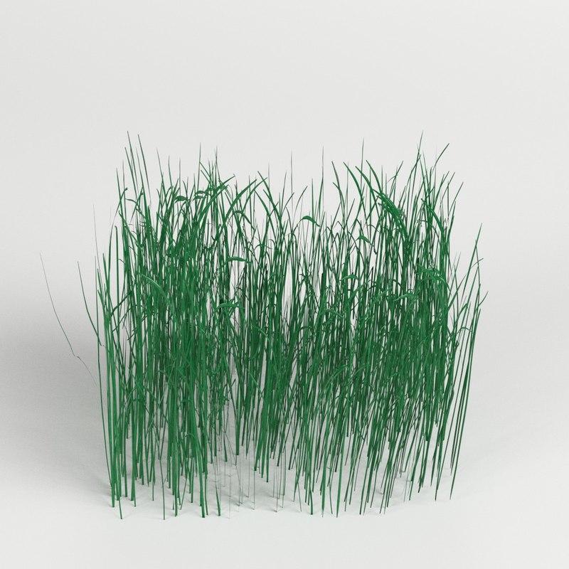 grass module 3D model
