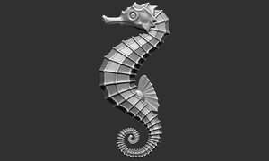 sea horse 3D model