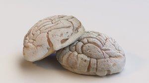3D mexican bread concha