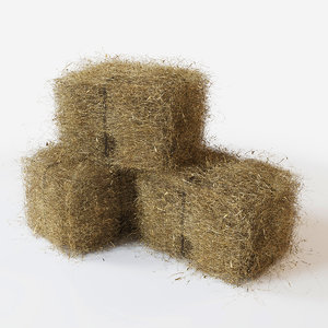 3D straw model