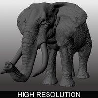 elephant animations 3D