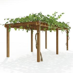 corona grape 3D model