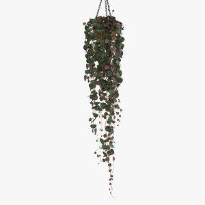 rosary vine model