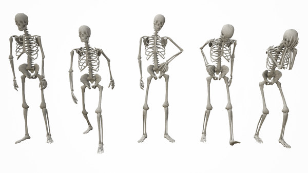standing poses low-poly skeletons model