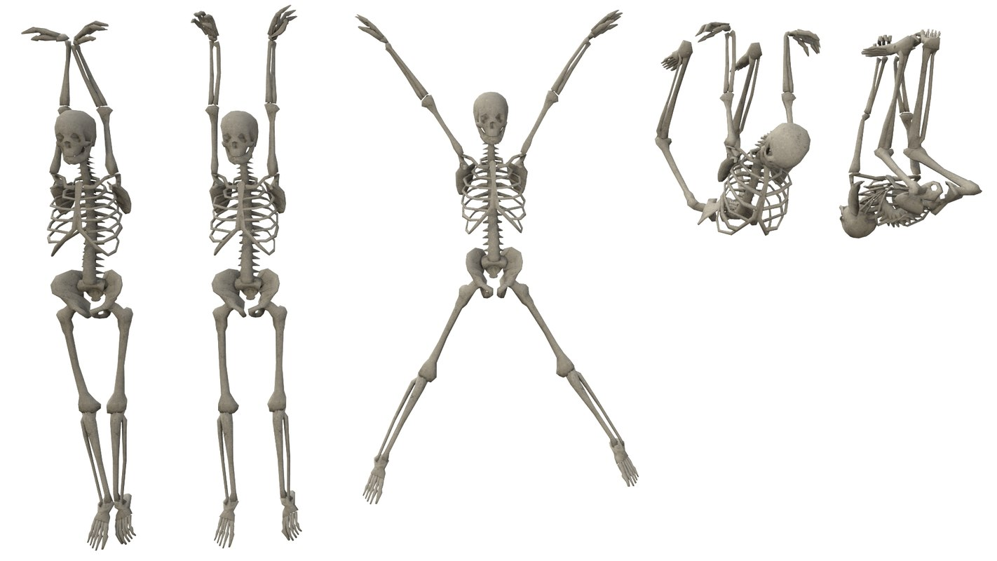 3D hanging poses low-poly skeletons model