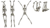 Skeleton Hanging Poses - Low-poly 3D model
