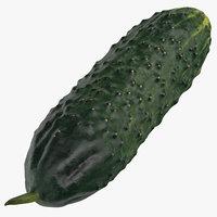 cucumber 01 3D model