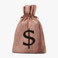 3D money bag model