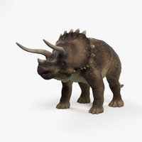 triceratops 3D