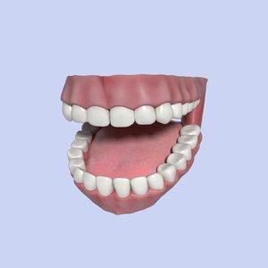 dent dentures mouth 3D model