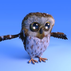owl cartoon style feather 3D