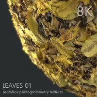 Leaves 01 - 8K seamless photogrammetry texture