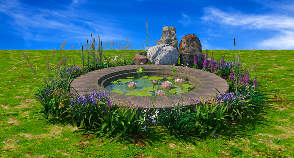 3D model pond