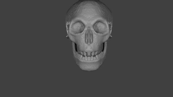 skull caveira model