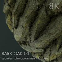 Tree Bark Oak 03 - 8K seamless photogrammetry texture