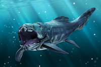 dunkleosteus animal 3D model
