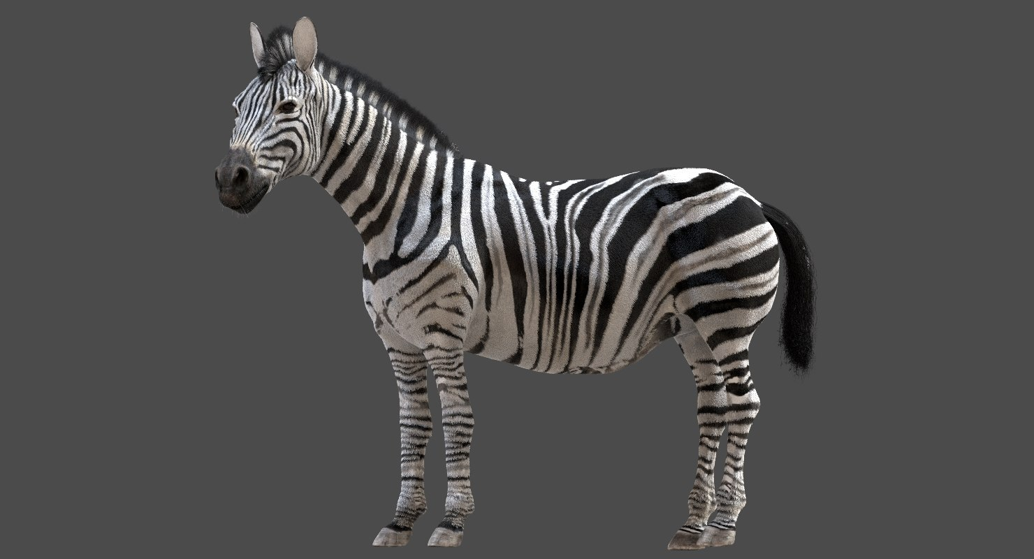 horse rigged 3D