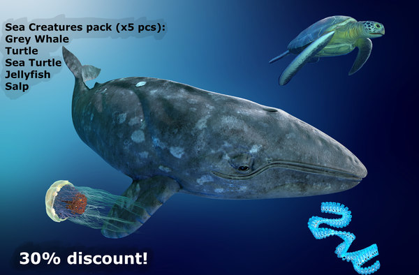 sea creatures ar vr 3D